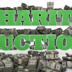 Charity Auction Ideas
